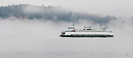 The Washington State Ferry, Sealth, moves through Sinclair Inlet in autumn fog. Puget Sound, Washington state