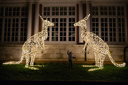 © Licensed to London News Pictures. 22/11/2018. London, UK. Two year old Lily Tang views a pair of kangaroo shaped lights showing as part of the new ZSL London Zoo Christmas light trail, experiencing the landmark London location in a different light. Photo credit: Ray Tang/LNP