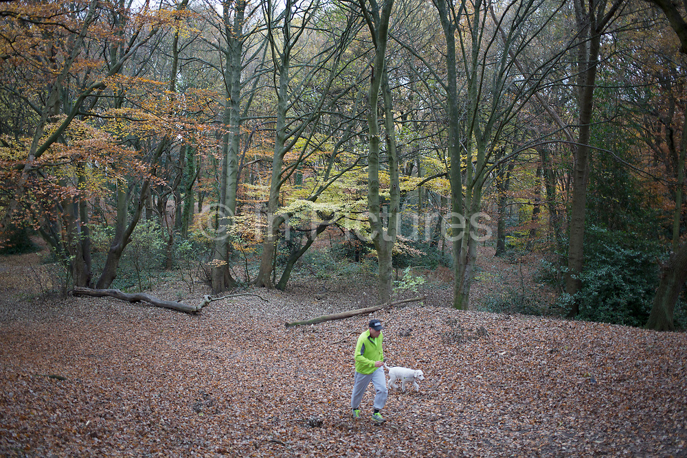 """Man out running with his dog on Sandy Heath, ancient woodland and part of Hampstead Heath (locally known as """"the Heath"""") is a large, ancient London park, covering 320 hectares (790acres). This grassy public space is one of the highest points in London, running from Hampstead to Highgate. The Heath is rambling and hilly, embracing ponds, recent and ancient woodlands."""