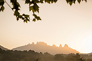 View of volcanic rock formations at sunset, Aiguilles de Bavella, Quenza, Corsica, France