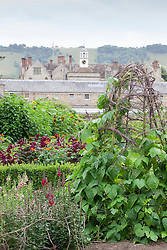 The parterre beds at Parham House with Amaranthus paniculatus 'Red Fox', Tithonia rotundifolia 'Torch'. Runnerbean 'White Lady' in the foreground with snapdragons