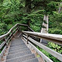North America, Canada, British Columbia, Vancouver Island. The West Coast Trail segment of Pacific Rim National Park Reserve.