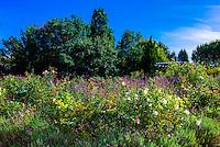 Denver Botanic Gardens, Denver, Colorado USA.
