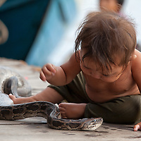 Boy playing with a python in Chong Khneas floating village.