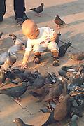Child age 2 feeding pigeons in center city.  Krakow Poland