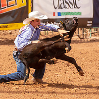 Photo: Jeffery Jones<br /> Trent Wood throws down his calf before tying it in a time of 11.71 seconds Saturday during the New Mexico High School Rodeo Association State Finals at Red Rock Park.