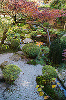 """Hosen-in was built more than 800 years ago as priest quarters for nearby Sanzen-in Temple. When seen a  certain angle, the foliage of this pine tree resembles Mount Fuji.   Hosen-in has second zen garden  called the """"Garden of the Crane and Turtle"""" symbols of long life.  This garden features various stones and patterns in an unusual way. The main features are the stone bridge, a raked gravel area."""