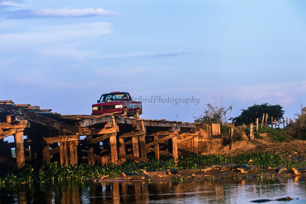 Wooden bridges & Yacare caiman (Caiman yacare)<br /> Northern Pantanal<br /> Transpantaneira highway<br /> Mato Grosso<br /> BRAZIL, South America