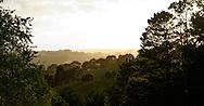 Gippsland hills sunrise