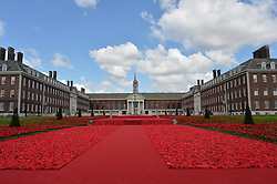 View at the 2016 RHS Chelsea Flower Show, Royal Hospital Chelsea, London on 23rd May 2016