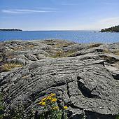 Gotland_augusti