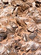 Close-up image of selenite crystals (gypsum, calcium sulfate) at Glass Mountain, Hartnett Draw, Capitol Reef National Park, Utah.