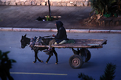 Donkey cart and owner make their way along Boulevard Allal Al Fassi, Marrakech.