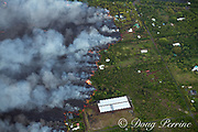 lava originating from Kilauea Volcano, erupting from fissure 8 in Leilani Estates, near the town of Pahoa, flows through Kapoho, destroying agricultural properties and burning crops, shade houses, dwellings, other structures, and streets, Puna District, Hawaii ( the Big Island ), Hawaiian Islands, U.S.A.