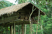 Two Kombai men sit on the veranda of their treehouse in Papua, Indonesia. September 2000. The Kombai are a so-called treehouse people, building their homes high up in the trees.