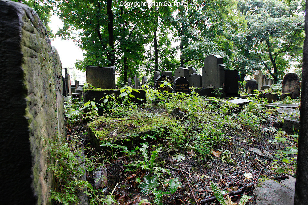 """The """"New"""" Jewish cemetery is overgrown in Krakow, Poland on Monday July 4th 2011.  (Photo by Brian Garfinkel)"""