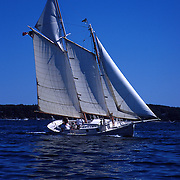 Gaff rigged schooner Dorothy Elizabeth owned by Roger F. Duncan beats to windward in Linekin Bay, Maine. .Photo by Roger S. Duncan.