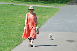 © Licensed to London News Pictures 01/06/2021. Greenwich, UK. A dog walker. People out and about in Greenwich Park, London as the hot heat wave weather continues. Photo credit:Grant Falvey/LNP