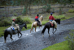 South America, Ecuador, Cotapaxi, Lasso, horseback riding excursion from Hacienda San Agustin de Callo   MR, PR