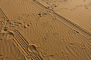Human presence in the form of 4x4 tyre tracks and footprints left in the sand of dunes at al-Galamun, near Dahkla Oasis, Western Desert, Egypt. .