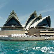Sydney Opera House in Sydney Bay During Australia Day. Sydney Opera House.