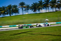 February 22, 2019 - Sepang, MALAISIE - 65 VIPER NIZA RACING (MAS) LIGIER JS P3 LMP3 DOUGLAS KHOO (MAS) NIGEL MOORE  (Credit Image: © Panoramic via ZUMA Press)