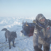 Ulrik Vedel just after falling into lead, rescuing dogs, 1st day, at -40 deg.