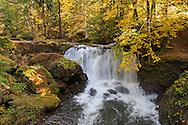 Whatcom Falls on Whatcom Creek in Whatcom Falls Park in Bellingham, Washington State, USA