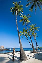 Woman visitor walking by Coconut Palms, Cocos nucifera, Pu`uhonua o Honaunau or Place of Refuge National Historical Park, Honaunau, Big Island, Hawaii