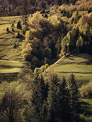 THEMENBILD - Bergwiesen und Mischwald im Sonnenlicht, aufgenommen am 02. Mai 2019, Kaprun, Österreich // Mountain meadows and mixed forest in sunlight on 2019/05/02, Kaprun, Austria. EXPA Pictures © 2019, PhotoCredit: EXPA/ Stefanie Oberhauser