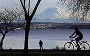 Those choosing to go to Seward Park are treated to a spectacle, as Mount Rainier puts on a show in Seattle.  Included are the first hints of sunnier weather. (Ken Lambert / The Seattle Times)