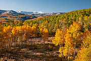 Autumn in the Flat Tops, White River National Forest, Colorado