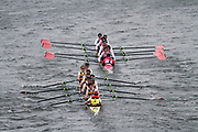 Crew: 2  Shiplake College  Event: CHAMP eights<br /> Crew: 1  Westminster Sch  Event: CHAMP eights<br /> <br /> Schools' Head of the River 2017<br /> <br /> To purchase this photo, or to see pricing information for Prints and Downloads, click the blue 'Add to Cart' button at the top-right of the page.