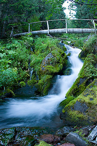 Scenic of stream in Mount Rainier National Park, WA<br />