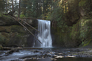 Upper North Falls, Silver Falls State Park, Oregon