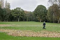 HENGELO (overijssel)-Herfst op Golfclub Driene