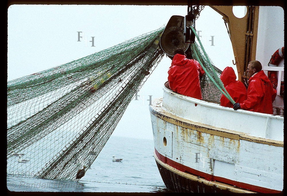 Fishermen gather in stern of a gillnet boat to pull fishing net aboard on July day; Faxafloi Bay Iceland