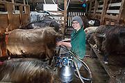 Sara Draxl (17), fra Tyrol i Østerrike. Er praktikant på Torbuvollen i 13 uker i forbindelse med sitt 5-årige studie i landbruk og mat.