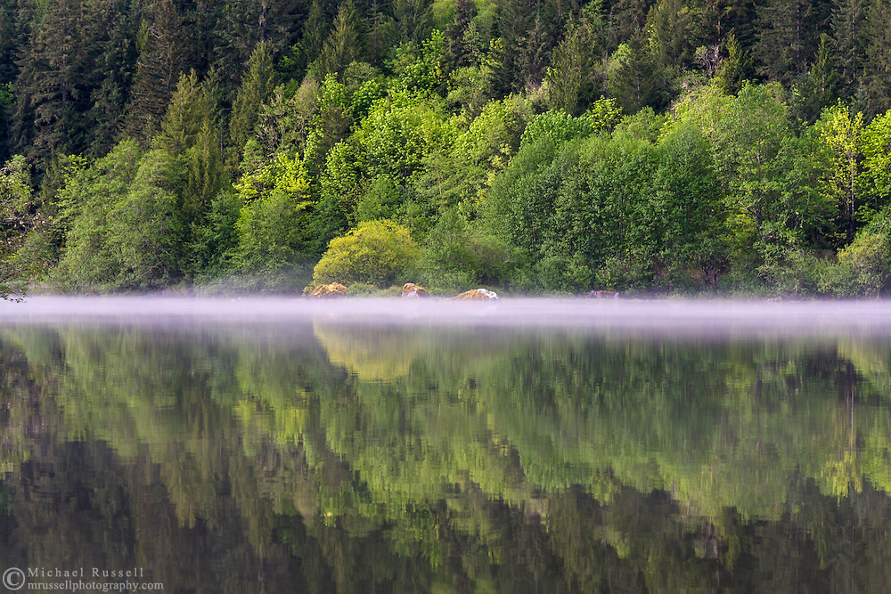Mist clearing from Silver Lake after a rainstorm - at Silver Lake Provincial Park near Hope, British Columbia, Canada