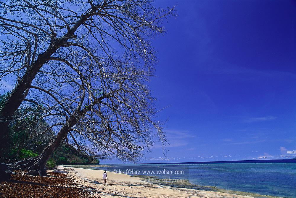 Rozengain / Hatta Island, Banda, Maluku, Indonesia.