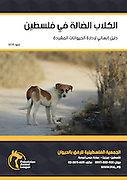Photo of street dog in Palestine. Used on cover of Handbook for vets and regulatory bodies on TNVR (Trap-Neuter-Vaccinate-Release) programme.<br /> Client: Palestinian Animal League