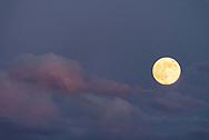 The May Full Moon adorns the night sky above Nenana, Alaska