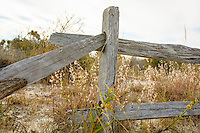 Split rail fence, Maryland end, Assateague Island National Seashore, USA.
