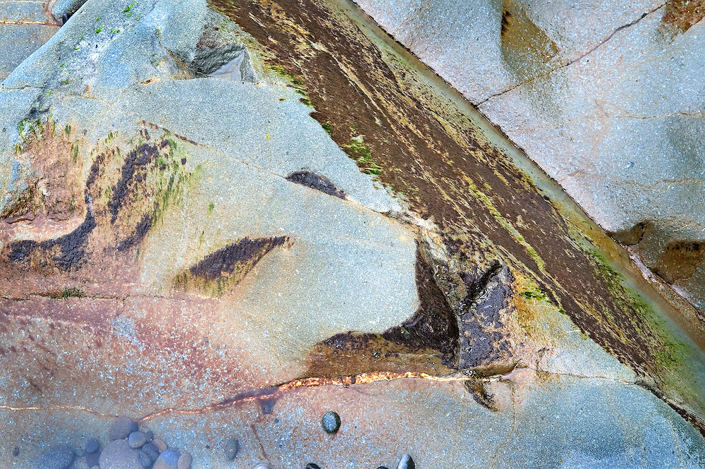 abstract colors and shapes in tidal rocks, LaPush beach 1, Washington State