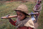 Child labour is common where poverty is rife in the Fianarantsua Highlands of Madagascar