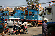 Tons of cardboard for recycling are packed onto huge trucks, at this recycling warehouse, it operates big distribution for cardboard and paper, on the edge of Phnom Penh. The smaller warehouses and street side recyclers have brought their cardboard and paper here in small lorries. The cardboard is packed tightly into large bundles and then exported to Thailand and Vietnam. However there are factories also which recycle cardboard in Cambodia.