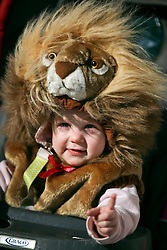 09 February 2016. New Orleans, Louisiana.<br /> Mardi Gras Day. A child in a lion suit. One of the many bright and colourful costumes in the French Quarter. <br /> Photo©; Charlie Varley/varleypix.com