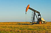 oil pump jack and canola field<br />Carlyle<br />Saskatchewan<br />Canada