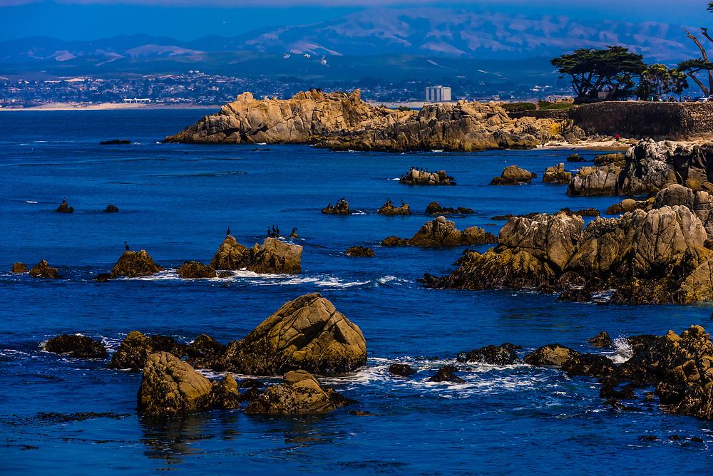 Coastline along Monterey Bay off Pacific Grove, California.