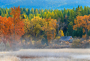 Small cabin at the south end of Swan Lake, Montana.